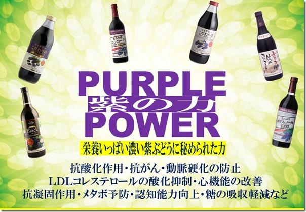 パープルパワーPOP(船井Ver)